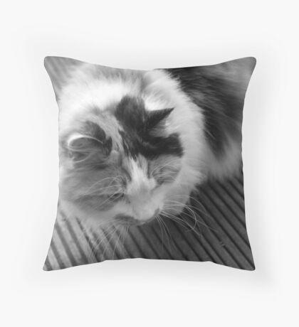 Tibbs the cat Throw Pillow