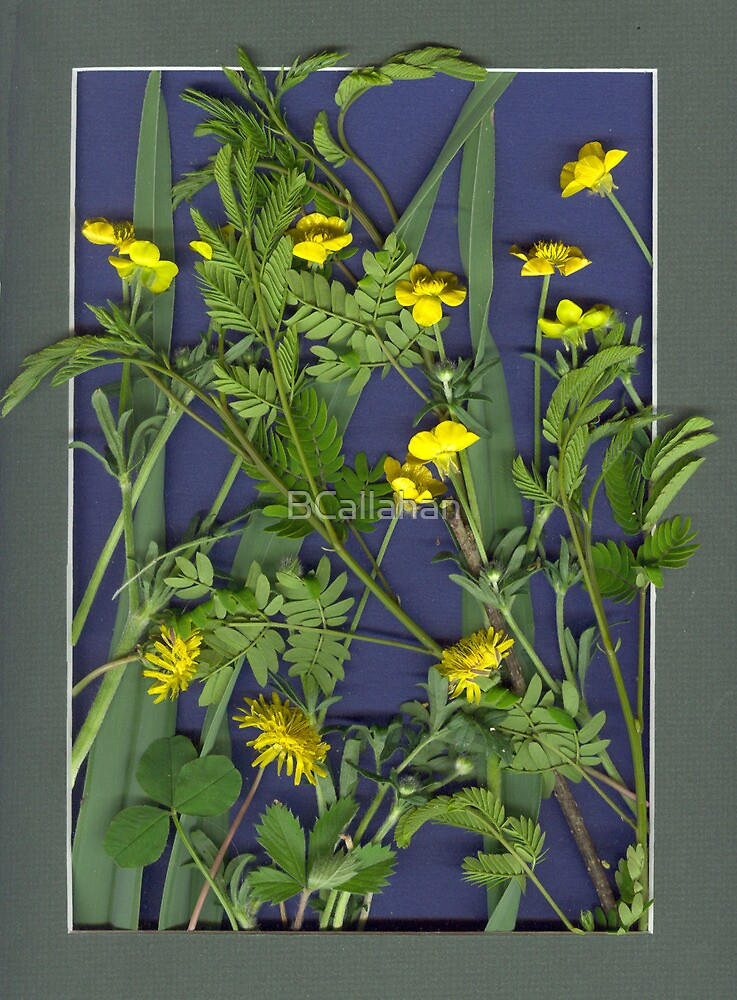 SCANNER ART - GREENS AND YELLOW FLOWERS by BCallahan