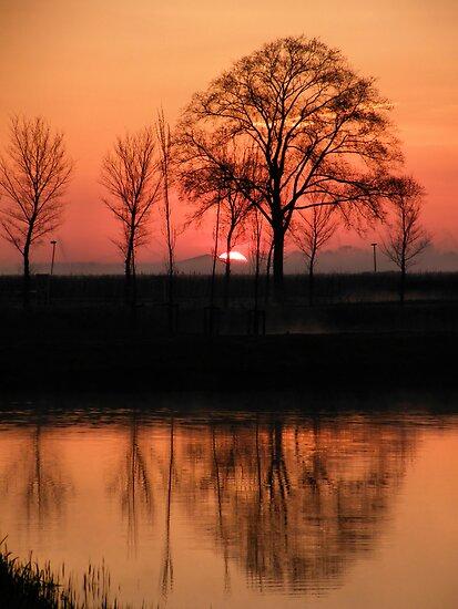 Good Morning Sun by Jo Nijenhuis