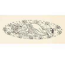 Mrs Leicester's School Charles & Mary Lamb with Minifred Green 18xx 0016 Asleep in the Flowers Photographic Print