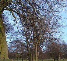 Spring Is Definitely Here!! by Sandra Cockayne