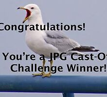 JPG Cast-Off Challenge Banner by Monnie Ryan