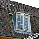 Roof Window, Copenhagen by James J. Ravenel, III