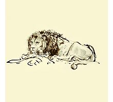 Vintage Japanese Ink Sketch of a Lion Photographic Print