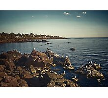 Rocks ans Seagulls in the Coast of Piriapolis Photographic Print