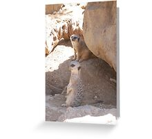 Meerkat Couple Greeting Card
