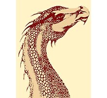 Petoskey Dragon Photographic Print