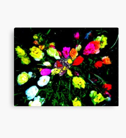 Butterfly Free 2 Canvas Print