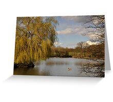 Willow on the Lake Greeting Card