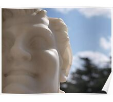 Marble Face Poster