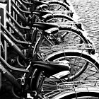 Black and White Bicycles by Martin Sutton