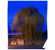 Earth Day Weeping Willow Poster