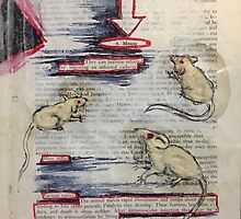 Rabies in Mice by Ginzer