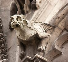 Gargoyle by christymcnutt