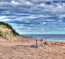 Beach Under Cloudy Skies by Monica M. Scanlan