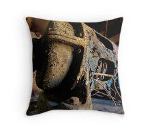 Pumphouse Pig - Naamans Creek USA Throw Pillow