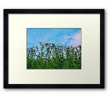 In the Grass Framed Print