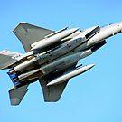 F-15 Fighting Redhawks by Bob Hortman