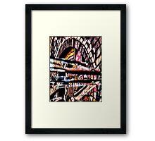 lacerated 'Liquorice allsorts'   Framed Print