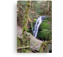 Coal Creek Falls Canvas Print