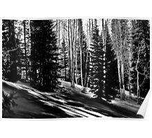 Winter Solitude Black and White Poster