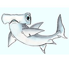 Tommy the Great Hammerhead Photographic Print