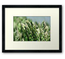 Sulphuric Spears Framed Print