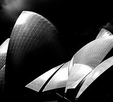 Australian Sydney Opera house by moon light by Andrew Wilson