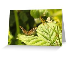 Speckled Wood Greeting Card