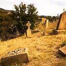 Cemetery at St John's Church in Richmond, Tasmania by Elana Bailey