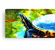 Colorful Turtle by Sharon Cummings Canvas Print