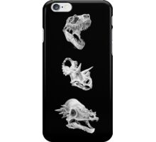 Cretaceous Park iPhone Case/Skin