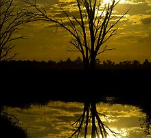 Time to reflect by Norman Repacholi