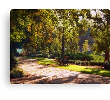 Autumn morning in Rosalind Park Canvas Print