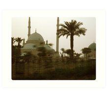 Citadel of Salah El-Din Art Print