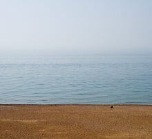 A calm day on Brighton Beach by MattGrover