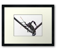 ©NS Mr Unknow Bug IA. Framed Print