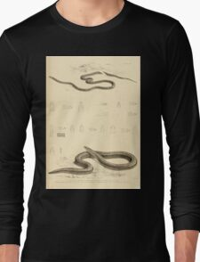 The Reptiles of British India by Albert C L G Gunther 1864 0515 Snakes Long Sleeve T-Shirt