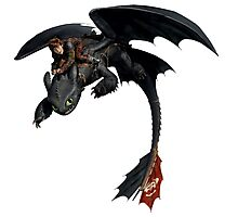 Toothless and Hiccup Photographic Print