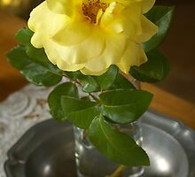 Rose épanouïe  by Gilberte