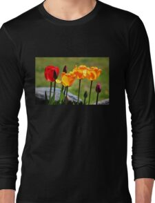 Tulips in the Light Long Sleeve T-Shirt
