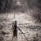 abandoned post by Kevin Williams