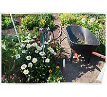 Garden Still Life Poster