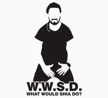 What Would Shia LaBeouf Do?  by spookyruthy