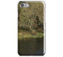 Upper Lough Erne Boat iPhone Case/Skin