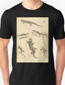 The Reptiles of British India by Albert C L G Gunther 1864 0503 Gecko Sinhonis, Subpalmatus etc Unisex T-Shirt