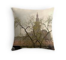 Cleveland CityScape 2010-01 Throw Pillow