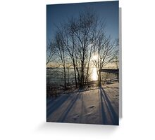 Long Shadows in the Snow Greeting Card