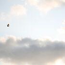 Kite Runner by mikaelee