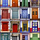 Doors with a Latin Flair by Esperanza Gallego